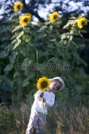 jardin flor planta eeuu girasol al