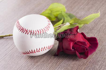baseball and rose