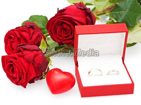flor rosa planta boda matrimonio romantico