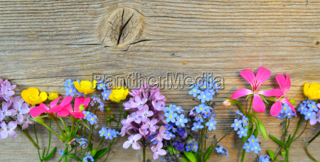 flowers on a wooden board