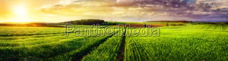 paisaje rural panorama sunset