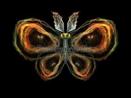 elementos de mariposa