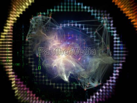 la vida interior de la red