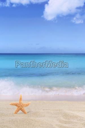 fondo de la escena de playa