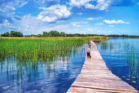 hermoso paisaje de la naturaleza