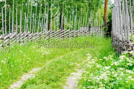 paseo viaje culturalmente antiguo suecia cosecha