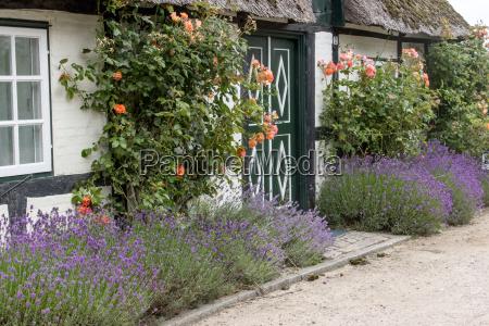 casa construccion jardin madera flor flores