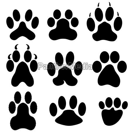 contacto ir tipo disenyo grafico animal
