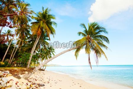 koh samui beach koh samui beach
