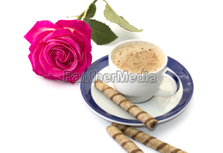 bebidas flor rosa planta cappuccino cafe