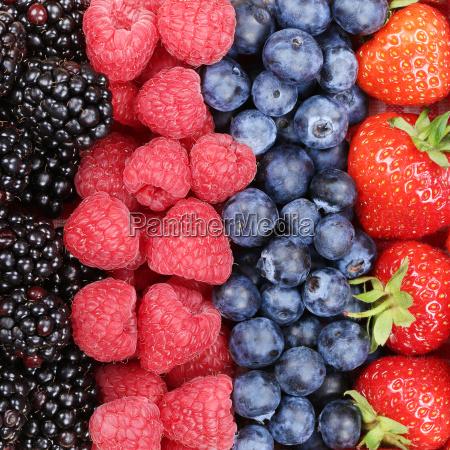 frutas de bayas seguidas con fresas