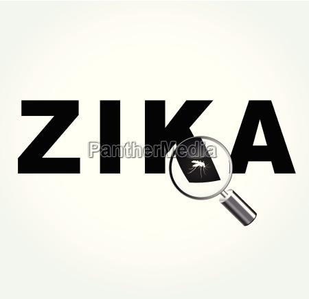 mosquito en el virus zika