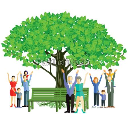 family generations tree