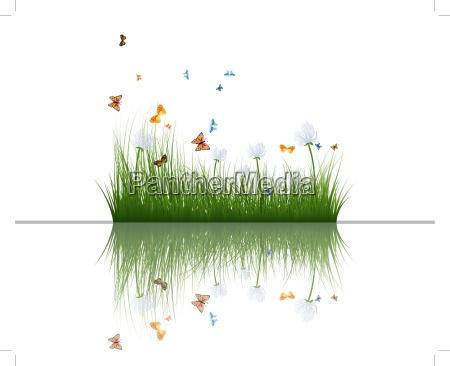 hierba con reflejos en el agua