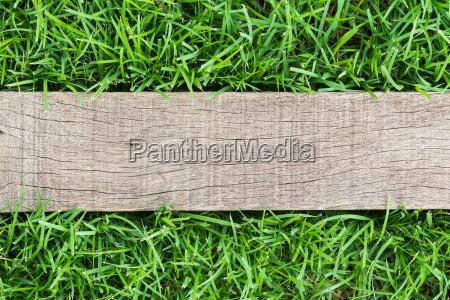 grain wood on green grass