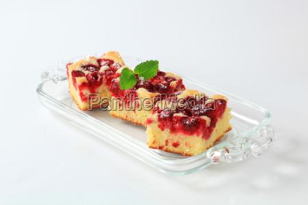 raspberry sponge cake squares