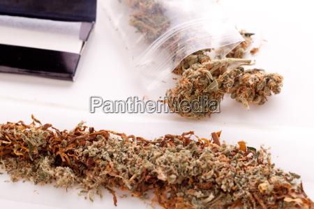 marihuana con papel y articulacion para