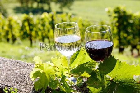 vasos de vino tinto y blanco