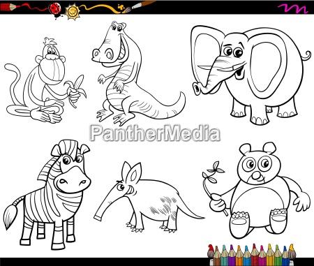 colorear dibujos de animales salvajes para colorear - Stockphoto ...