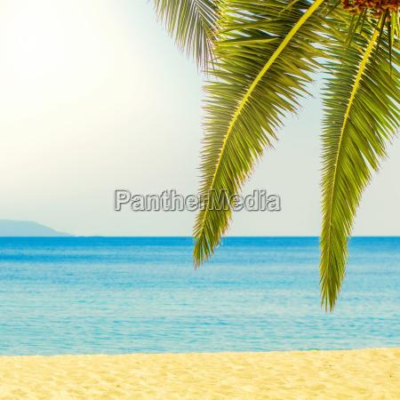 destino playa tropical viajes de verano