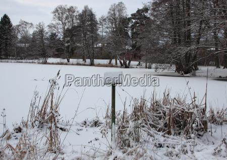 hermoso bueno invierno nieve escarcha al
