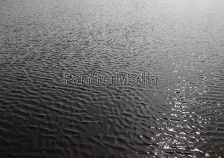 contraste negro verano veraniego ondas reflexion