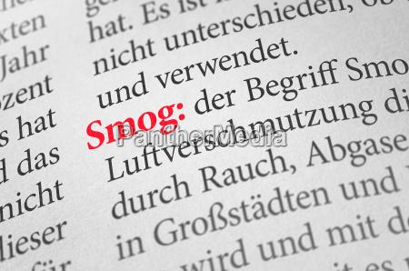 diccionario con el termino smog