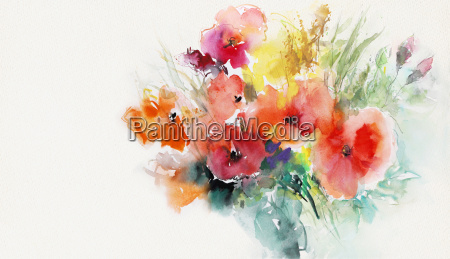 papel pintado amapolas