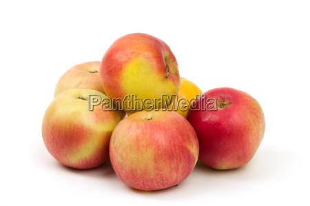 salud fruta jugoso zalamero