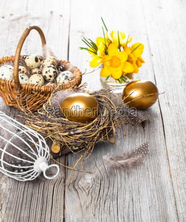 huevos de gallina en el nido