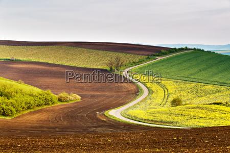 road in moravia hills in april