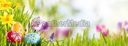 religioso simbolico fiesta vacaciones flor flores