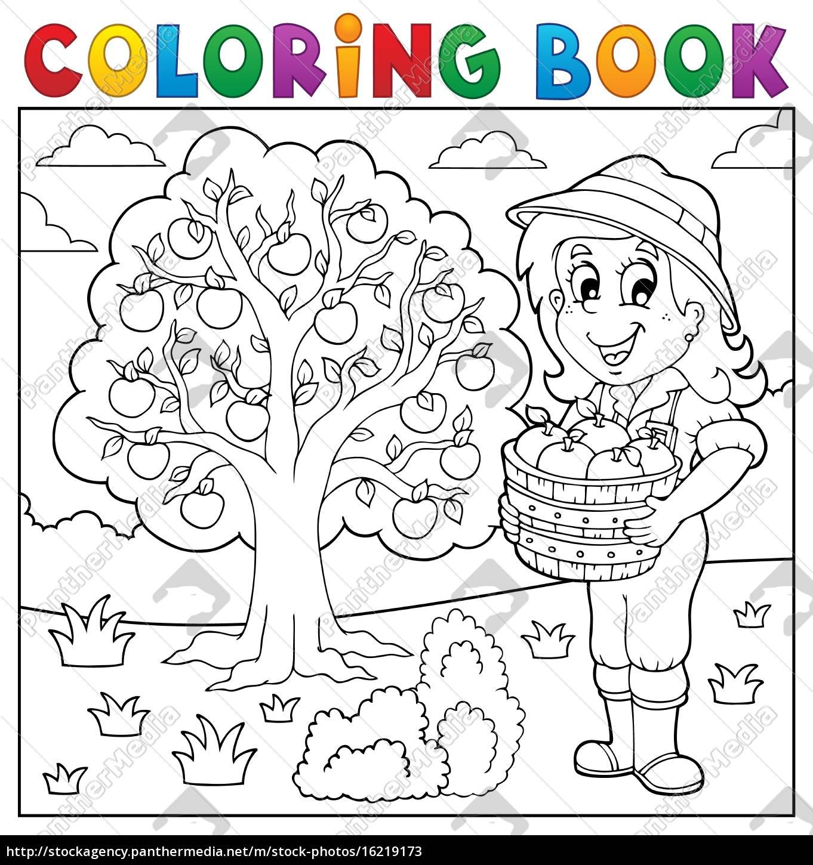 libro para colorear chica con manzanas recogidas - Stockphoto ...
