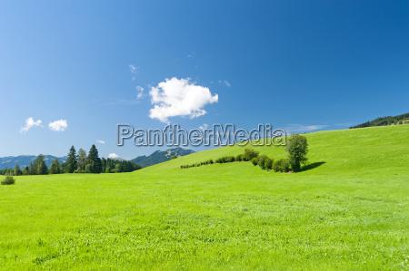 nube baviera alemania prado paisaje naturaleza