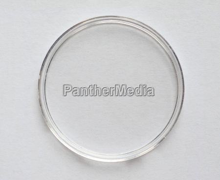 cultura celula comida cilindrico