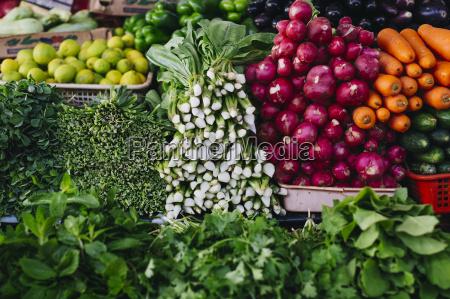 acuerdo paseo viaje frescura vegetal etiquetas