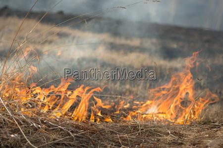 quema fuego de hierba seca