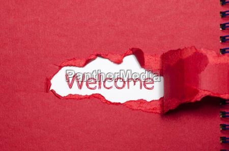 la palabra bienvenida aparece detras de