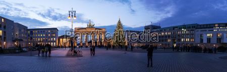 paseo viaje ciudad monumento famoso arbol