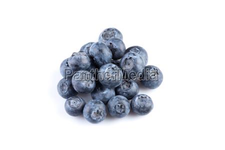 azul comida hoja objeto dulce liberado