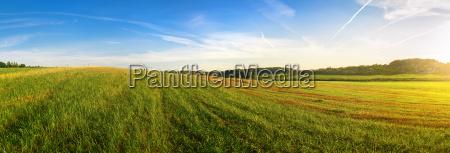 paisaje panoramico de verano