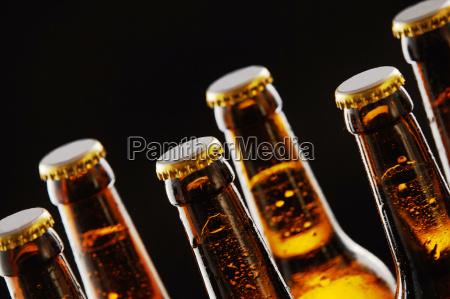 cuellos de botellas de cerveza selladas