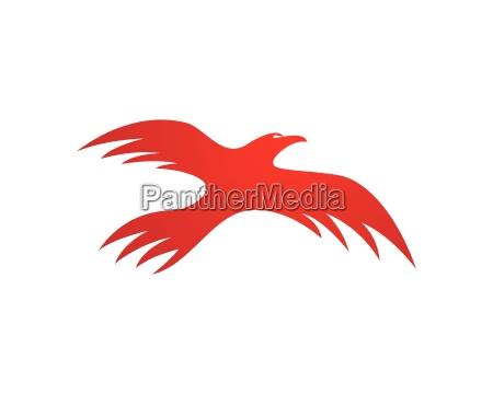plantilla de logotipo falcon