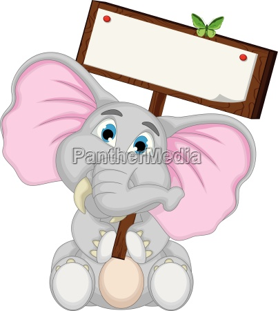 lindo elefante historieta sosteniendo blanco signo