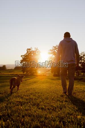 man walking dog in rural field