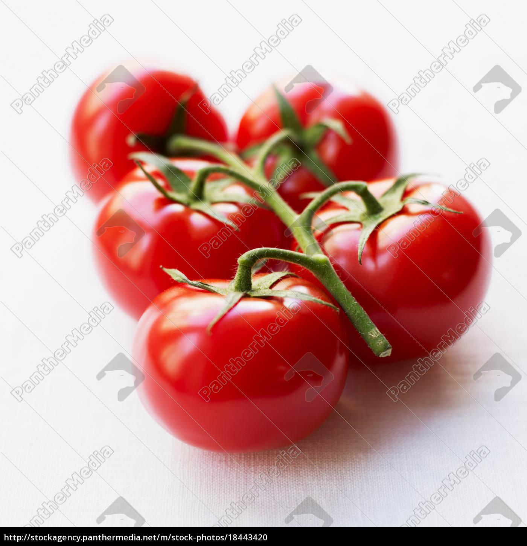 tomates, en, rama - 18443420