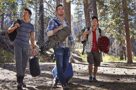 three young men in forest with