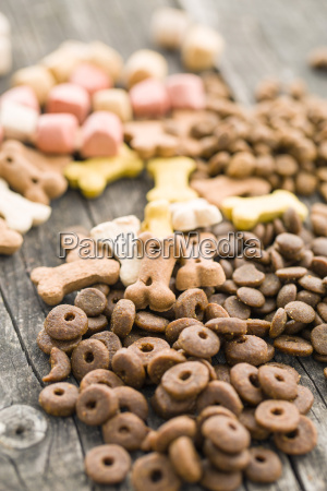 comida animal mascotas animal de peluche