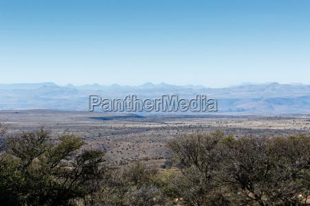 parque animal mamifero salvaje africa kenia