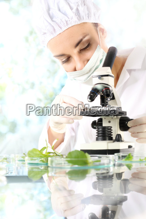 genetic engineering in the cultivation of